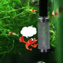 Lõi Inox Bịt Tép Thủy Sinh Phi 12mm